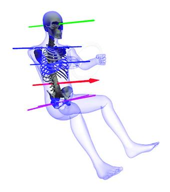 What is the ideal state of the human body when it is walking?