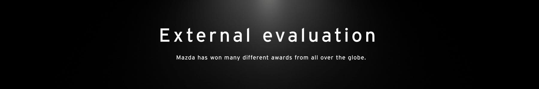 External evaluation